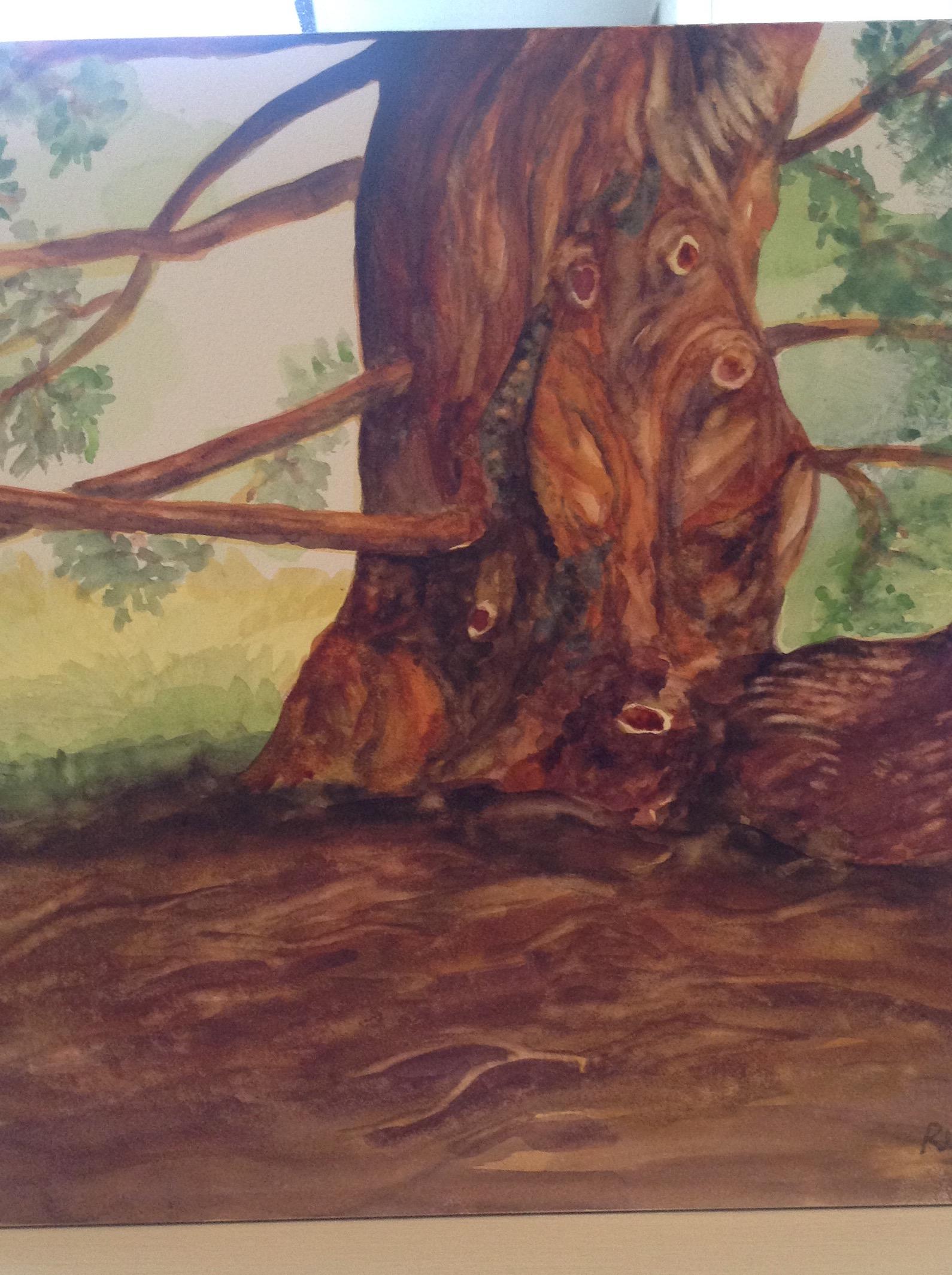 Gnarly Tree at 16th Tee
